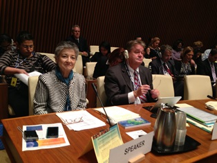 IAPO member at WHO meeting